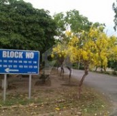 1 Kanal Residential Plot For Sale in Wapda Town Phase 1 - Block D2, Wapda Town Phase 1