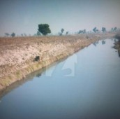 300 Kanal Agricultural Land For Sale in Jhang, Punjab