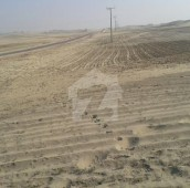 200 Kanal Agricultural Land For Sale in Jhang, Punjab