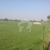 400 Kanal Agricultural Land For Sale in Others, Nankana Sahib