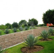 14 Marla Residential Plot For Sale in MPCHS - Block C, MPCHS - Multi Gardens