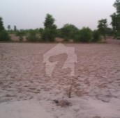 200 Kanal Agricultural Land For Sale in Bosan Road, Multan