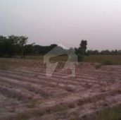 160 Kanal Residential Plot For Sale in Bosan Road, Multan