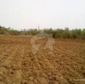 40 Kanal Agricultural Land For Sale in Mustafabad, Kasur