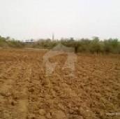 60 Kanal Agricultural Land For Sale in Mustafabad, Kasur