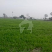 448 Kanal Agricultural Land For Sale in Faisalabad Road, Shahkot