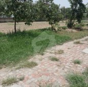 1000 Kanal Agricultural Land For Sale in Others, Bhakkar