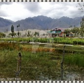 3 Bed 5 Kanal Farm House For Sale in Skardu, Gilgit Baltistan