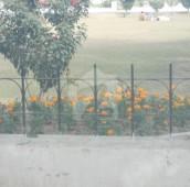 10 Marla Residential Plot For Sale in Wapda Town Phase 1, Wapda Town