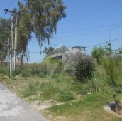 1 Kanal Residential Plot For Sale in AGHOSH Phase 1, AGHOSH