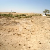 10 Kanal Agricultural Land For Sale in Bedian Road, Lahore