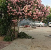 20 Kanal Agricultural Land For Sale in Chak Shahzad, Islamabad