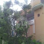 2 Bed 6 Marla House For Sale in Adalat Garh, Sialkot