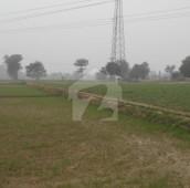 696 Kanal Agricultural Land For Sale in Kasur, Punjab