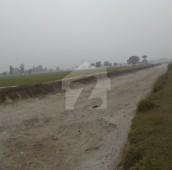280 Kanal Agricultural Land For Sale in Kot Radha Kishan, Kasur