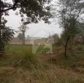 320 Kanal Agricultural Land For Sale in Kot Radha Kishan, Kasur