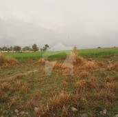 58 Kanal Agricultural Land For Sale in Attock, Punjab