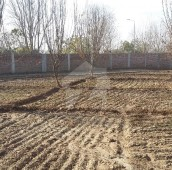 100 Kanal Farm House For Sale in H-9, Islamabad