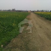 25 Kanal Agricultural Land For Sale in Burki Road, Cantt