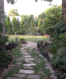 11 Bed 3.9 Kanal House For Sale in Gulberg, Lahore