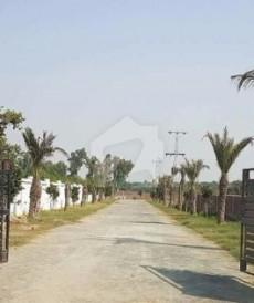 6 Kanal Farm House For Sale in Barki Road, Cantt