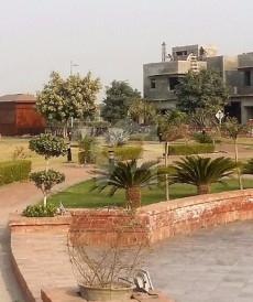3 Bed 5 Marla House For Sale in Zaitoon - New Lahore City, Main Canal Road