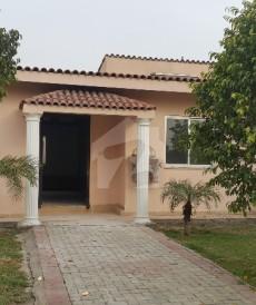 2 Bed 6 Marla House For Sale in Bahria Nasheman - Sunflower, Bahria Nasheman