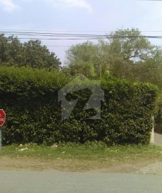 6 Kanal House For Sale in Model Town - Block C, Model Town