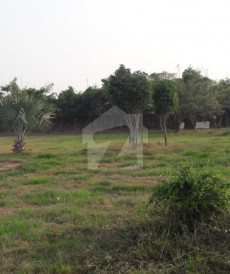 4 Bed 16 Kanal Farm House For Sale in Bedian Road, Lahore