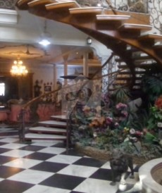 8 Bed 6 Kanal House For Sale in Model Town, Lahore