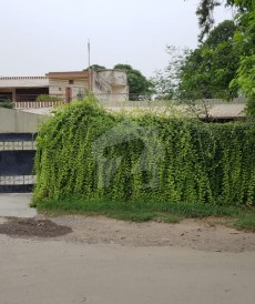 1.25 Kanal House For Sale in Abid Majeed Road, Cantt