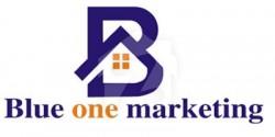 Blue One marketing