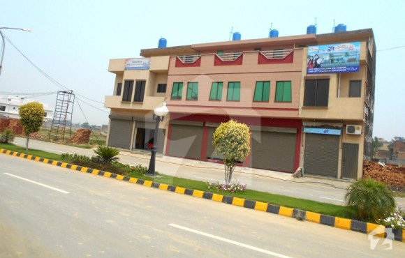 10 Marla house for sale in Faisal Town - Homes.pk