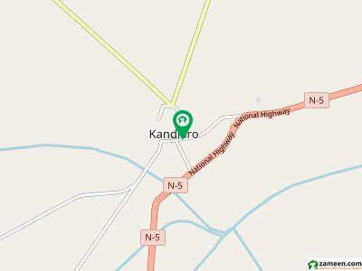 كنڈيارو نوشہرو فیروز میں 256 کنال زرعی زمین 14.4 کروڑ میں برائے فروخت۔