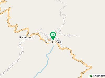 Kalabagh