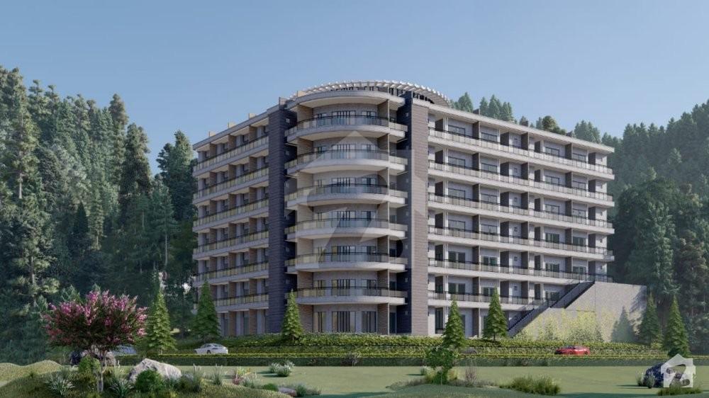 Pine Sunset Apartments