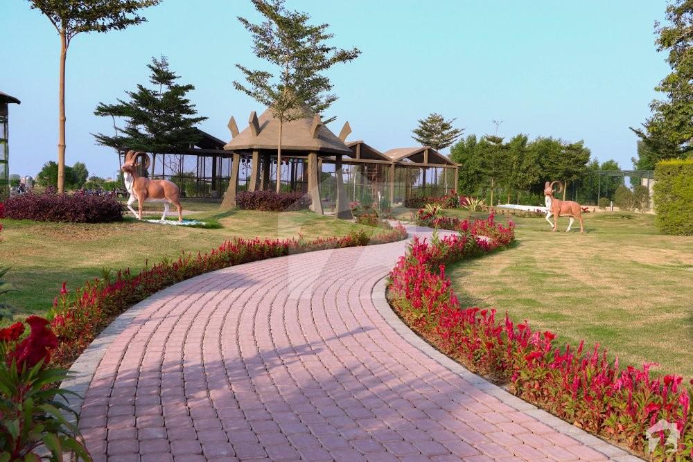 Safari Garden Housing Scheme