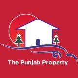 The Punjab Property