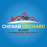Chenab Orchard