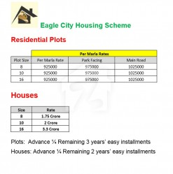 Payment Plan For Eagle City