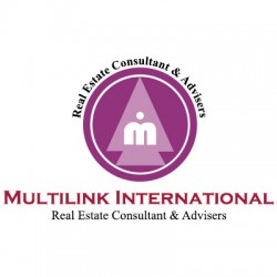 Multilink International