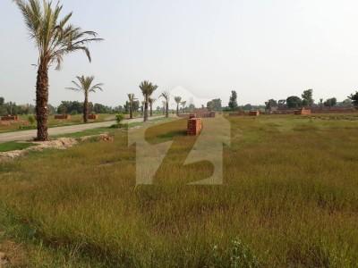Etihad Farm Houses